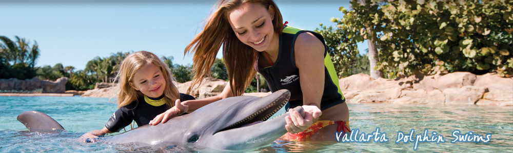 international volunteer abroad culture mexico tours-puerto vallarta-dolphin swim