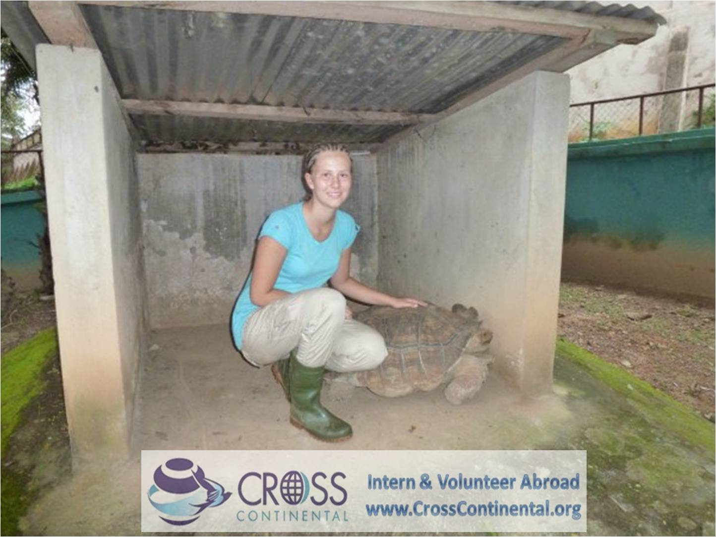international internships and intern abroad an volunteer abroad Africa-Ghana-121-wildlife volunteer abroad projects-monkey sanctuary