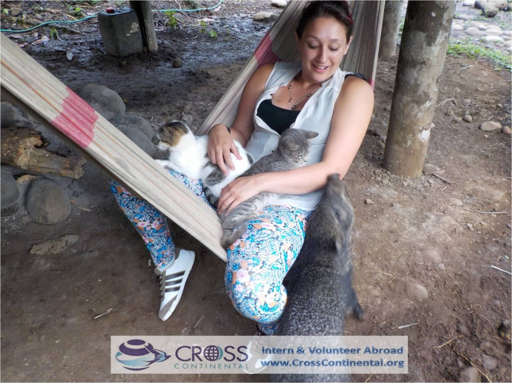 international internships volunteer abroad intern abroad Latin America Ecuador 140 tori wildlife internships abroad---